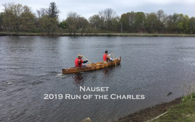 2019 Run of the Charles –        11 Years and Going Strong
